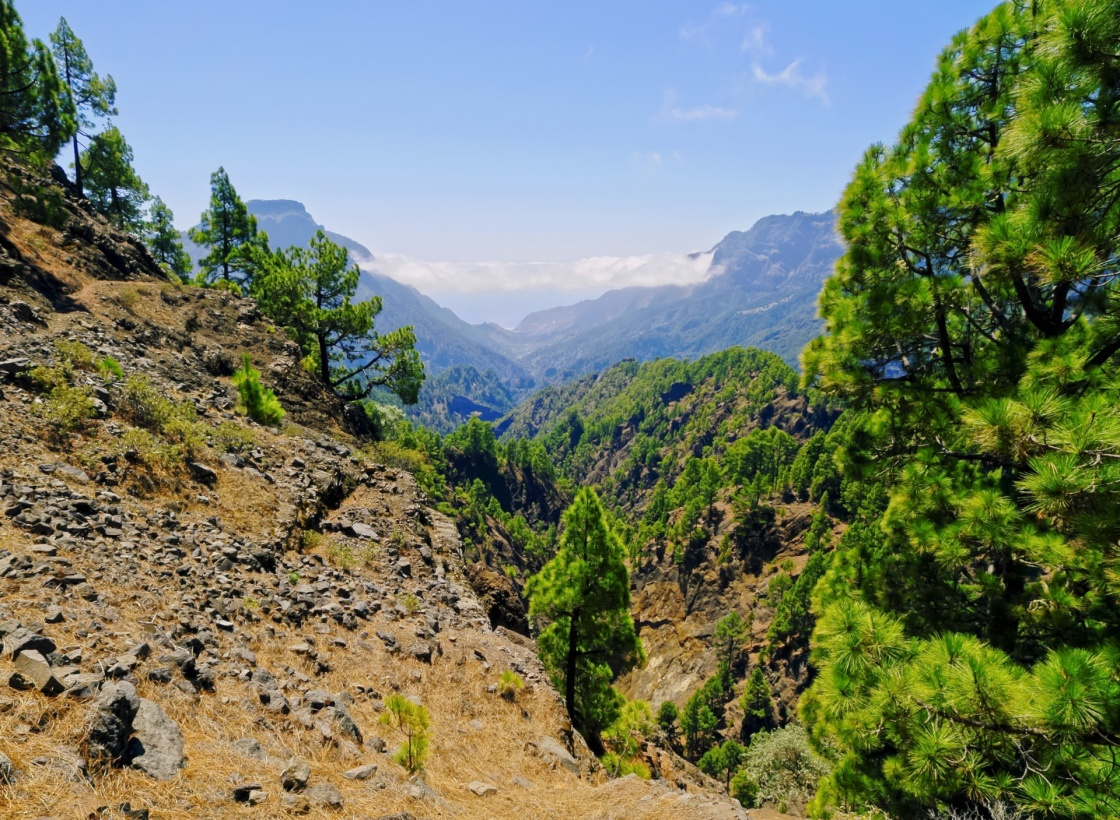 National Park Caldera de Taburiente on the island La Palma, Canary Islands, Spain